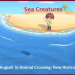 All August Sea Creatures in Animal Crossing: New Horizons