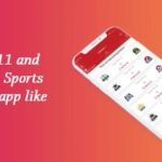 What is Dream 11 and how to develop a Sports Fantasy Cricket app like Dream 11?